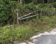 87433 ROSES BLUFF RD, Yulee image