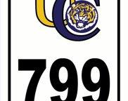 799 Thomas Boyd Dr, Baton Rouge image