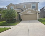 11624 Branch Cay Circle, Riverview image