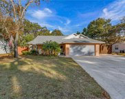 606 Cricket Hollow Lane, Eustis image