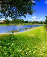 117 Olivera Way, Palm Beach Gardens image