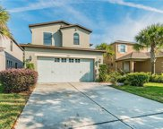 7825 Tuscany Woods Drive, Tampa image