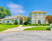 15209 Leith Walk Lane, Tampa image