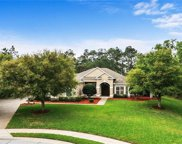 14239 Oakwood Cove Lane, Orlando image