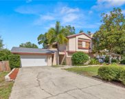3940 Orchard Hill Circle, Palm Harbor image