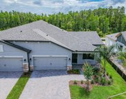 19359 Hawk Valley Drive, Tampa image