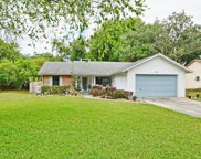 1702 Blackberry Court, Eustis image