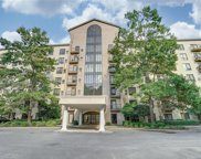 211 Heritage  Boulevard Unit #604, Fort Mill image