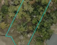 LOT 4 Stamper Trail, Pawleys Island image
