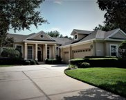 11536 Claymont Circle, Windermere image