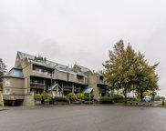 31 Reliance Court Unit 110, New Westminster image