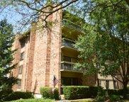301 Lake Hinsdale Drive Unit #313, Willowbrook image