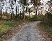 Richards Creek  Road, Sterling Twp image