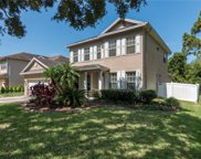 6101 Native Woods Drive, Tampa image