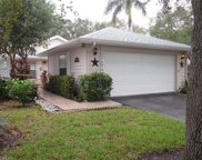 14819 Crooked Pond Ct, Fort Myers image