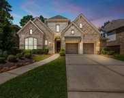17307 Blanton Forest Drive, Humble image