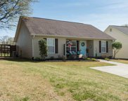 345 Bishop Hicks Ct, Inman image
