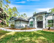 12205 Gray Birch Circle, Orlando image