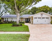 7803 Snapping Turtle Court, Hudson image