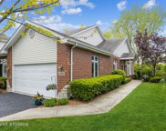 18808 Crystal Creek Drive, Mokena image