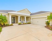 12097 Longview Lake Circle, Bradenton image