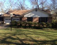 8172 San Cristobal Drive, Dallas image