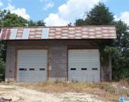 1705 Old Hwy 75, Oneonta image
