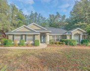 3626 Royal Fern Circle, Deland image