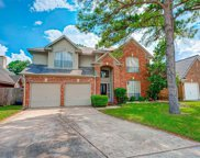 17119 Crown Meadow Court, Houston image