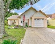 4633 Cabbage Palm Drive, Valrico image