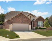 10652 Hibiscus Cove, Helotes image