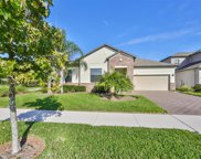 12805 Satin Lily Drive, Riverview image