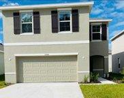 10956 Trailing Vine Drive, Tampa image