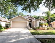 7115 Colony Pointe Drive, Riverview image