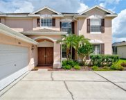 4326 Waterford Landing Drive, Lutz image