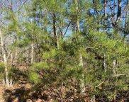Lot 52 Butternut Ln, Sevierville image