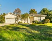 110 White Hall Drive, Palm Coast image