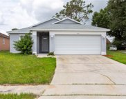 7112 Hickory Branch Circle, Orlando image