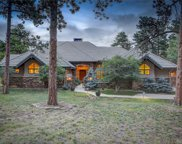 1449 Pine View Place, Golden image