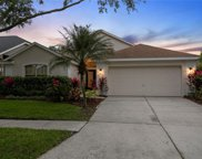 10361 Lightner Bridge Drive, Tampa image