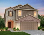 241 Texas Thistle, New Braunfels image