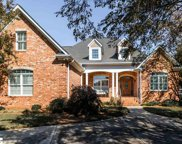 2 Sundew Court, Greenville image