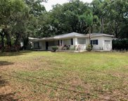801 Mark Drive, Clearwater image