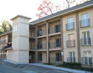 1004 Game Day Way Unit Apt 1, Knoxville image