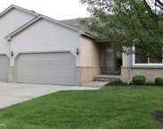 29288 Red Maple, Chesterfield image