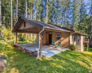 9521 124th Ave, Anderson Island image