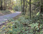 Rafter Rd, Tellico Plains image
