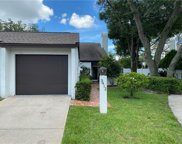 3412 Hunters Run Lane, Tampa image