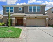 10712 Pictorial Park Drive, Tampa image