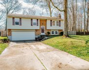 1263 Pine Forest  Drive, Amelia image
